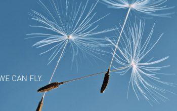 Ein Fliegender Teppich am blauen Himmel —— FLIEGENDE TEPPICHE AUS DÜREN